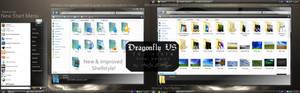 Dragonfly VS for Vista FINAL