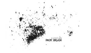 various brushes