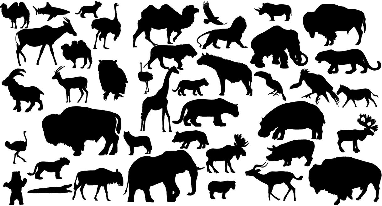 41 Animal Vector Silhouettes by Lukasiniho on DeviantArt