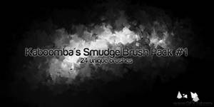 24 Smudge Brushes
