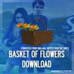 [MMD] Flower basket - DL