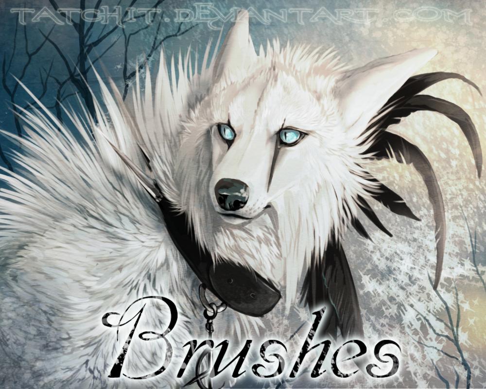 Brush Set by Tatchit