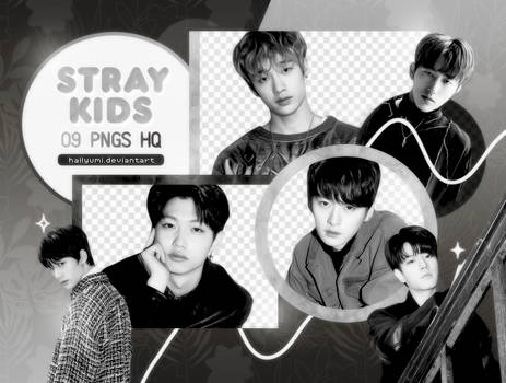 PNG PACK: Stray Kids #4 (Mixtape)