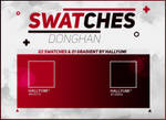 SWATCHES: DongHan