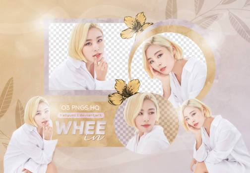 PNG PACK: Wheein #1