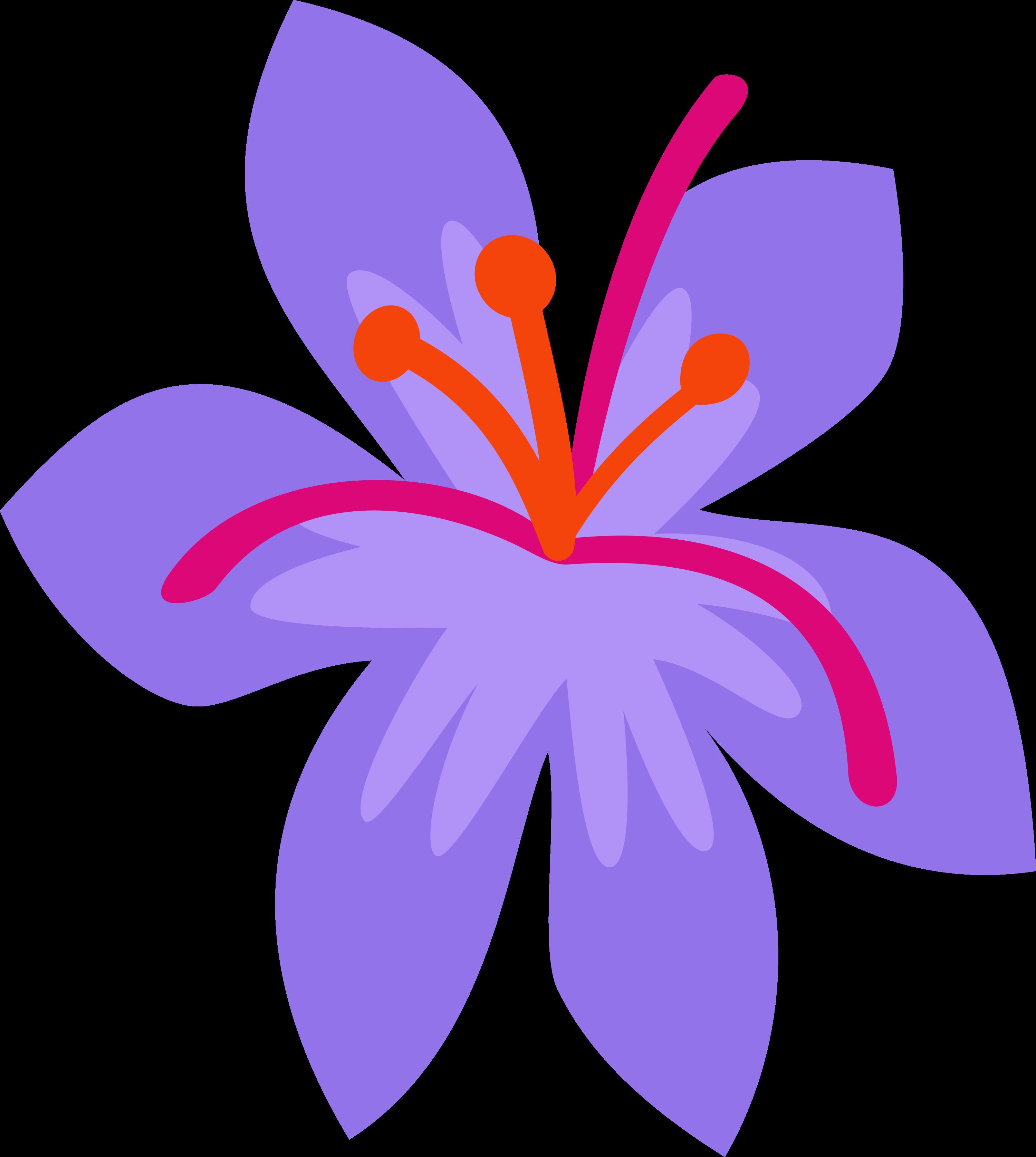 Saffron Masala CM