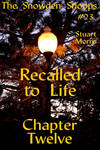 Recalled to LIfe Chapter 12 by MisterMistoffelees