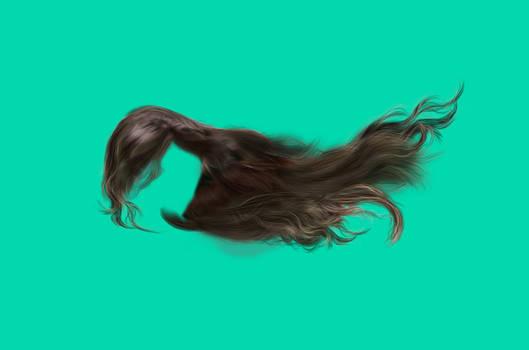 Hair stock (HQ)