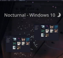 Nocturnal W10