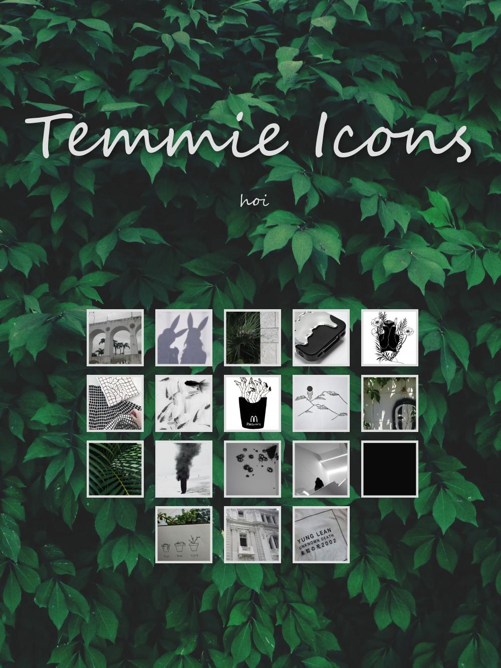 Temmie Icons