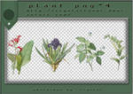 PNG PACK#3 - Plant