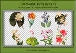 PNG PACK#5 - Plant