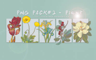 PNG PACK#2 - Plant