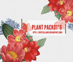 plant pack-01-#6