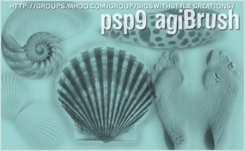 Seashells by PspAgi