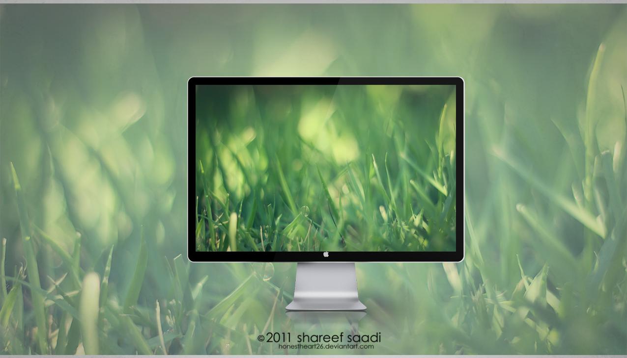 grass by Honestheart26