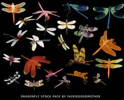 Dragonfly Stock Pack by FairieGoodMother