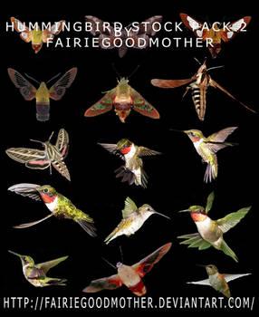 Multi Hummingbird Stock Pack