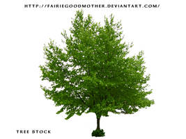 Tree Stock 2 by FairieGoodMother