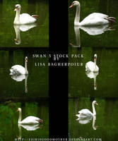 White Swan Stock pack PSD by FairieGoodMother