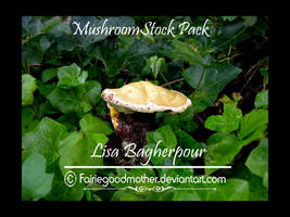Mushroom and Ivy Stock Pack 2 by FairieGoodMother