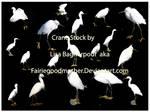 Crane  Stock Pack
