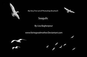 Seagulls Photoshop Brushes
