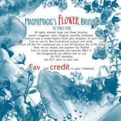 MagpieMagic Flower Brushes