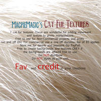 MM Cat Fur Texture Pack