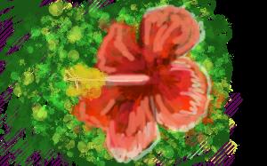 Hibiscus by 6gunSally