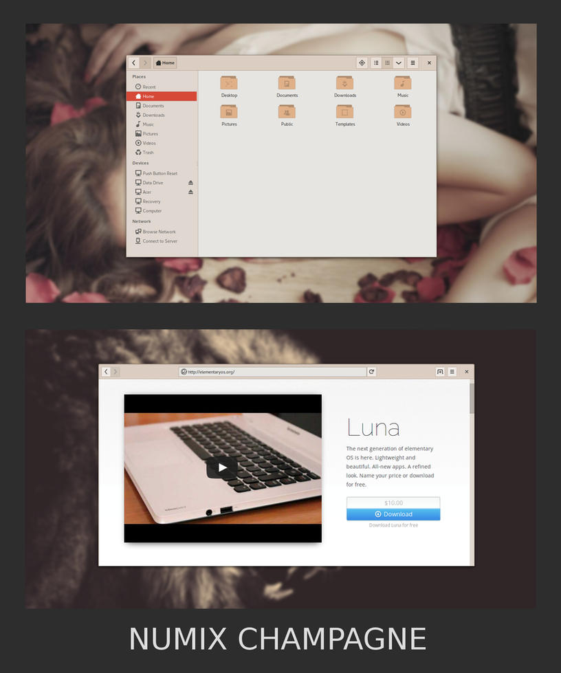 Numix Champagne - GTK3 Theme by xaahudude