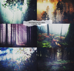 forest texture pack  - l u s graphic