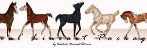 5 Foal lineart Package (P2U)