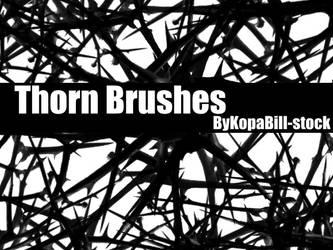 Thorn Brushes by KopaBill-Stock
