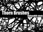 Thorn Brushes