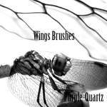 Winged Brushes