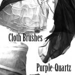 Cloth Brushes