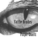 Cat Eye Brushes