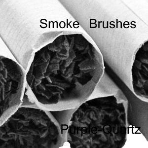 quart smoke brushes