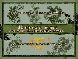 Spring Feelings Brushes by nathies-stock