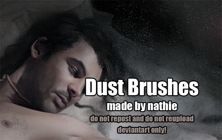 Dust Brushes