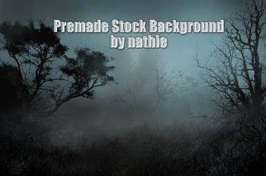 Premade Night Background