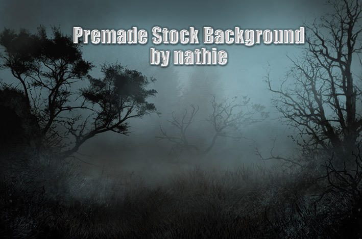 Premade Night Background by nathies-stock