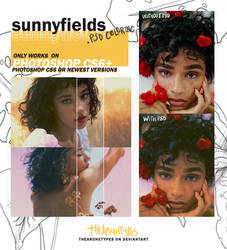 sunnyfields - PSD COLORING by Thearchetypes