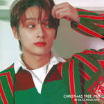 christmas tree .psd by dazzlingxlight - psd #10