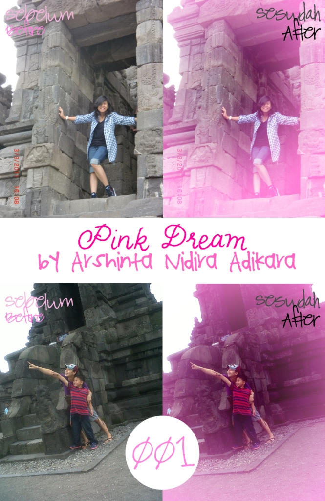 Pink Dream by Arshnta