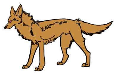 Sketchy Coyote Reference Photoshop PSD Template
