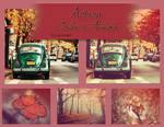 Action Color Autumn