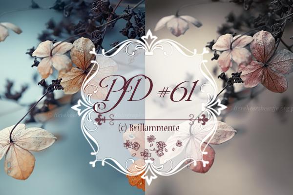 PSD #61