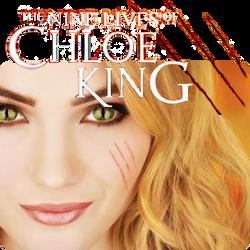 Nine Lives Of Chloe King Book